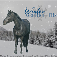 HEE Stable Avatar- Winter Wonder TBs by Prince-Studios