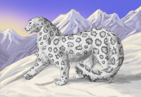 Taika the Snow Leopard by graphiteforlunch