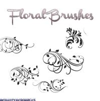 Floral Brushes by iBeHappyResources