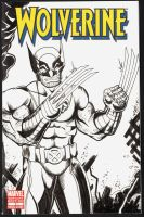 Wolverine sketch cover by The-Standard