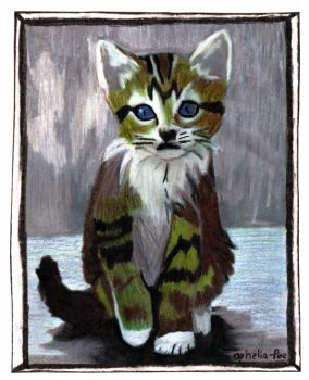 Mr. Kitty-Pencil Crayon-Katze by Ophelia-Poe