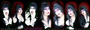 Elvira Cos Play at Niagara Falls Comic Con 2015 by VisualEyeCandy