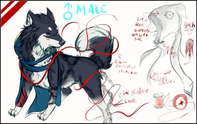 Kenny/Cole * UPDATED REF SHEET * by Kokamiii