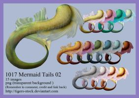 1017 Mermaid Tails 02 by Tigers-stock