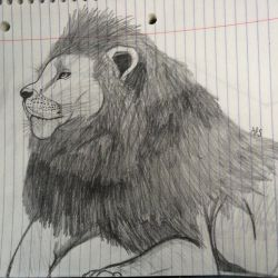 Lion by Coraline12345