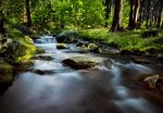 The Flow by MarcoHeisler