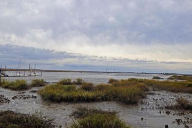 Low Tide At The Salt Marsh by firerytopaz