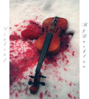 Violin 7 by lauriecphoto