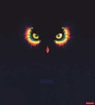 OWL by Rodier
