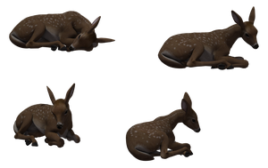 Deer - Fawn 03 by Free-Stock-By-Wayne