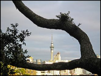 Skytower framed by nature by eRiQ