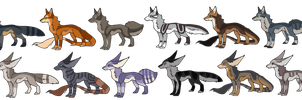 Canine Adopts open price lowered by P1geon-Feathers