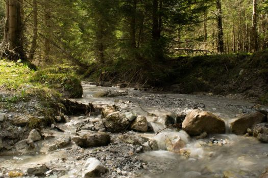 Small forest stream by Toghar
