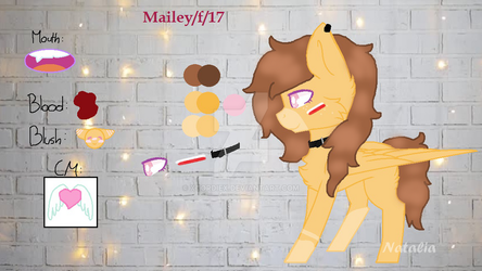 Mailey Ref Sheet by NataliaWolf2004