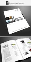 Corporate brochure 12 by demorfoza