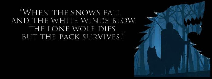Winter is Coming : Jon Snow and Ghost Silhouette by raisrulez