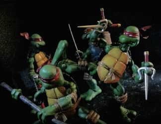 TMNT- Sparring Session by Dreven