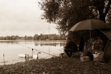 Fisherman's Friends by cyro-prime