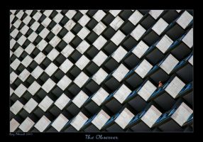 The Observer by Aderet