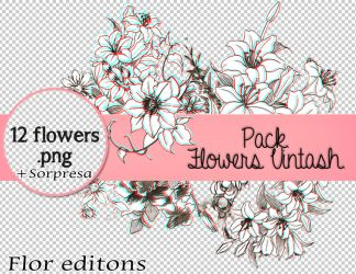 Pack de flores png. by DreamBilieveImagine