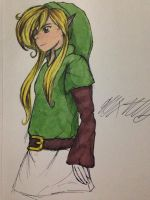 Link by ansem-the-dead