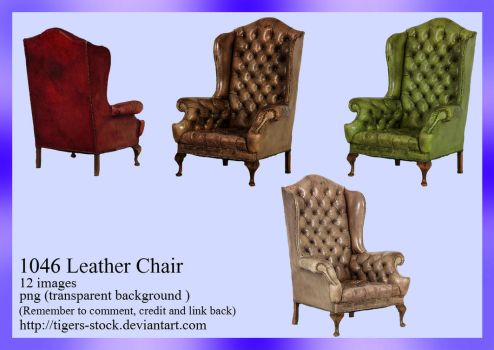 1046 Leather Chair by Tigers-stock