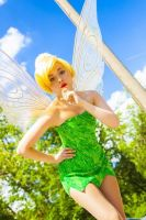 Tinkerbell - Don't trust lost girls by Tink-Ichigo