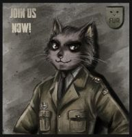 Major General Whiskers by Berylunee