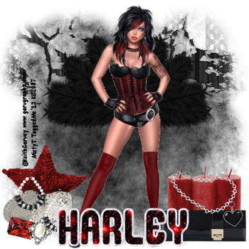 hhMOUSOURECORD by harleyhottie72