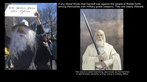 Liberals don't Know Gandolf by SwytheQ