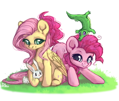 Pinkie and Fluttershy by GrayPillow