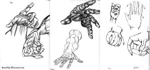 Hand Sketches -Anatomic- by NoneOnly