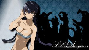 Saeko Busujima - Highschool of the dead wallpaper by UR-31