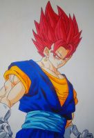 Vegetto Super Saiyan God by Daisuke-Dragneel