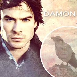 Damon by galato
