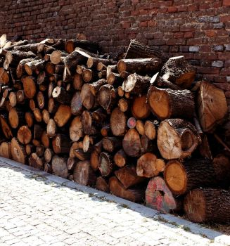 Wood for winter. by StarInfusion