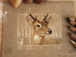 10 - Deer by Loisa