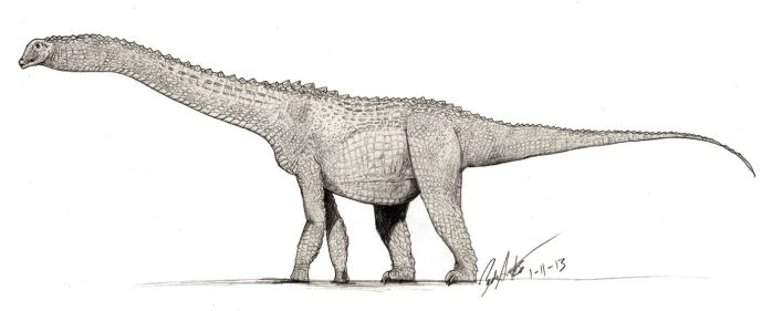 Alamosaurus drawing with croc scales by palaeozoologist