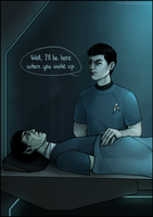 ST: Spock|Bones by maryallen138