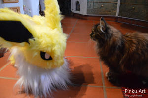 A wild Jolteon appeared