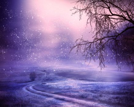 The first snowfall - stock by Bluefairy-16