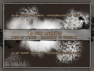 Fur Brushes by nathies-stock
