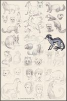 Sketchdump: Ferrets, Foxes and Fantasy Creatures by Avanii
