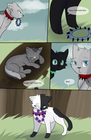 Bloodclan: The Next Chapter Page 40 by StudioFelidae