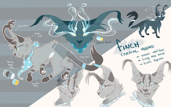Finch Reference - July 2016 by Finchwing