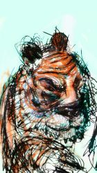 scatching wize tiger by niC0ras