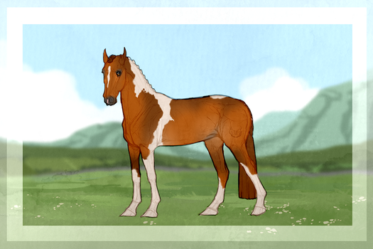 Fiiach Horse Import 32 | OPEN by becauseDia
