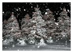 White Christmas by incredi