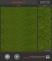 Grass Pattern 1.0 by Sed-rah-Stock