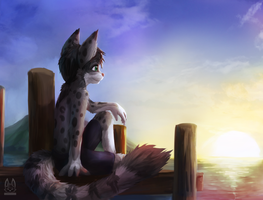[Commission] Norwegian Summer Sunset by thanshuhai